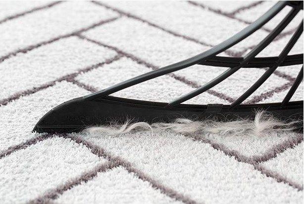 絨毯などの掃除