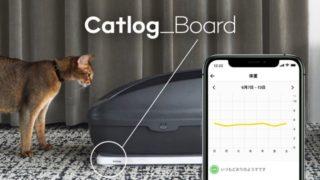 catlogboard