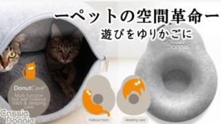 DonutCave